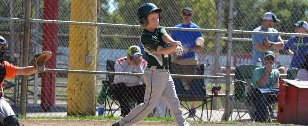 2016 Bombers Baseball